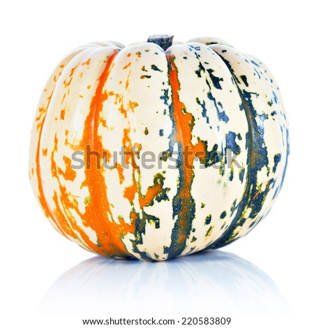 Decorative mottled orange and green pumpkin isolated on white background. Halloween decoration
