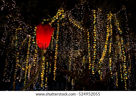 Decorative Outdoor String Lights Hanging On Tree In The Garden At Night  Time   Decorative Christmas