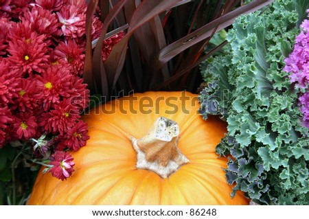 Decorative Pumpkin with Red Flowers and Cabbage Flower