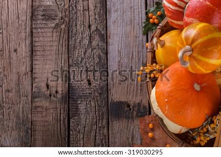 Decorative pumpkins. Autumn still life.Copy space.selective focus - stock photo