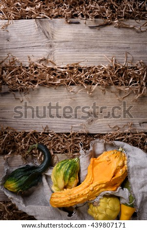 Decorative pumpkins over rustic wooden background. Autumn harvest, seasonal vegetables. Copy space, top view. - stock photo