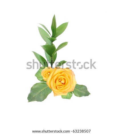 Decorative roses bunch - stock photo