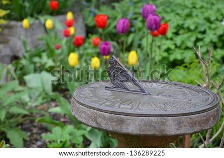 Decorative sundial in tulip garden - stock photo