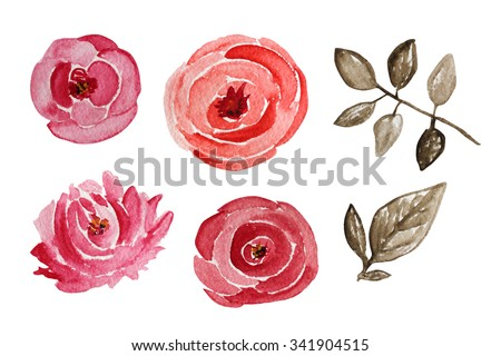 Decorative watercolor rose flowers, design elements. Can be used for wedding, baby shower, mothers day, valentines day cards, invitations. Painted flowers - stock photo