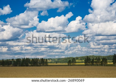 Deep blue sky full of clouds