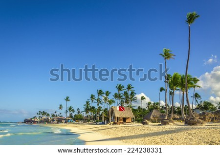 Deep blue sunrise landscape with tall palm tree on Caribbean Islands - stock photo