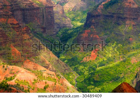Deep in the gorge of Waimea Canyon on the island of Kauai, Hawaii