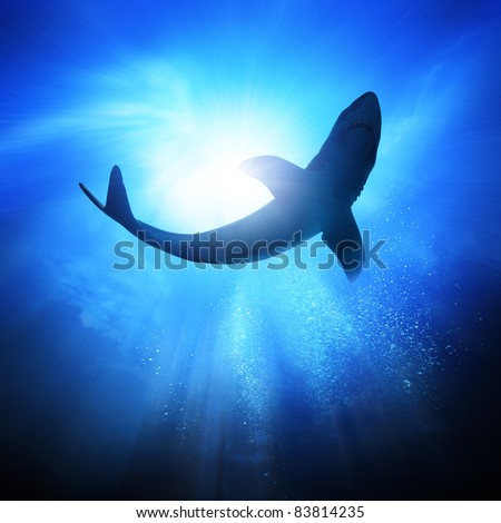 Deep under the ocean, looking up towards a shark. - stock photo