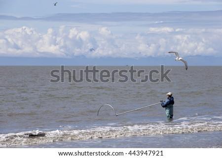 Deepnetting for King Salmon in Kenai peninsula, Alaska - stock photo