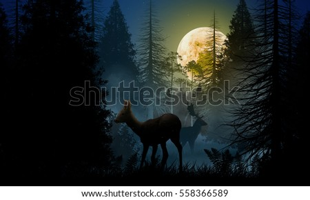Deer and stag in the woods at night