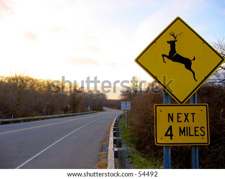 Deer Crossing Next 4 Miles Sign - stock photo