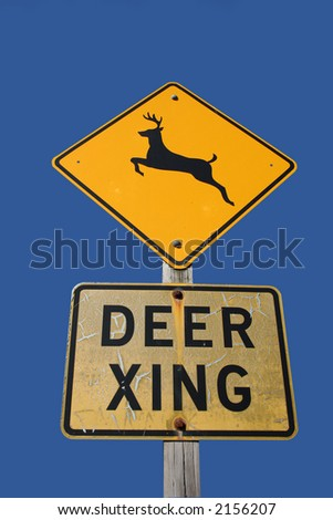 deer crossing sign black silhouette on yellow