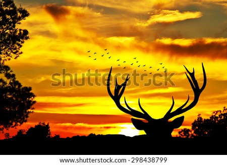 deer in the landscape - stock photo