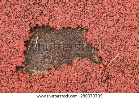 Defect of running track rubber cover in outdoor stadium - stock photo