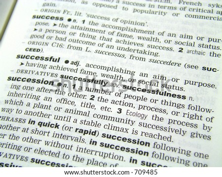 definition of successful in dictionary