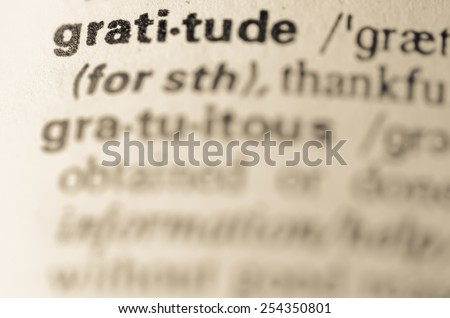 Definition of word gratitude in dictionary - stock photo