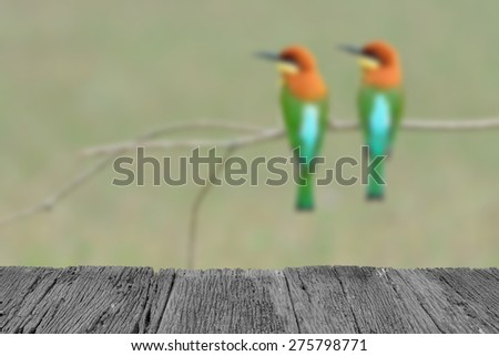 Defocus and blur image of old wood and Bird (Chestnut-headed Bee-eaters) , Thailand for background usage - stock photo