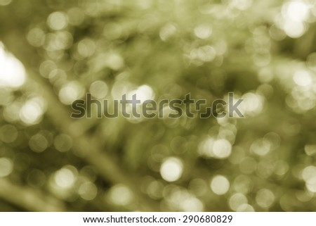Defocus nature green bokeh, Defocused abstract nature background with green leaves and bokeh lights