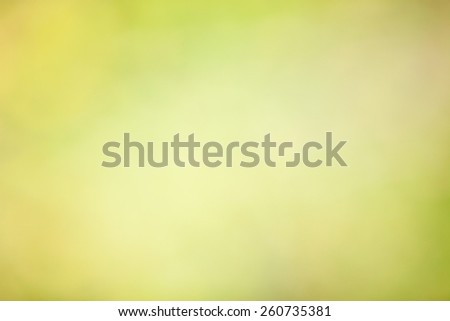 Defocused abstract bokeh of green foliage for use at graphic design - stock photo