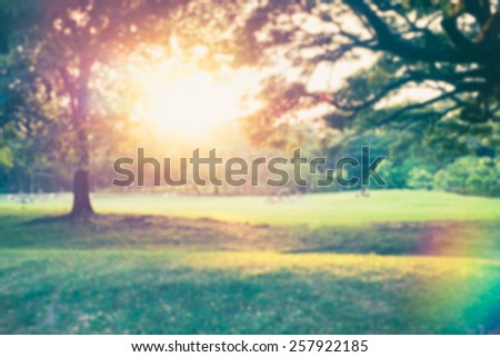Defocused beautiful sunrise at park vintage color - stock photo