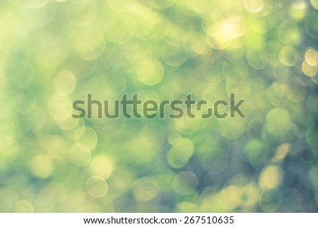 Defocused Bokeh, twinkling lights blurred bokeh abstract light spring forest background. Natural bokeh from leaf tree. Blur picture style. - stock photo