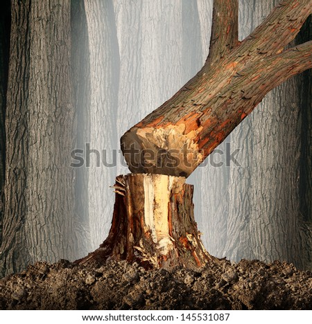 Deforestation concept and when a tree falls in a forest that is being cut down for development as an icon for environmental damage and problems in the conservation of the rainforest as in the Amazon.