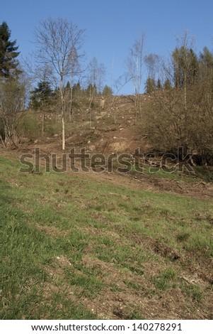 deforestation landscape - stock photo