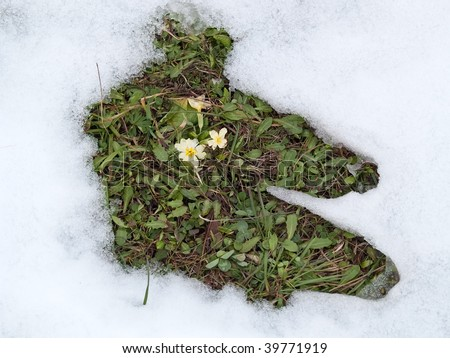 Defrosting snow in early spring - stock photo