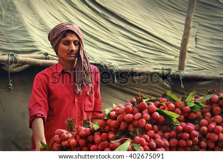 DELHI/INDIA - APR 02. Unidentified indian man sales a lot of sweet lychee fruits with leaves on April 02, 2016 in New Delhi central market, India, South East Asia - stock photo