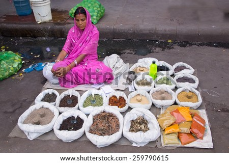 DELHI, INDIA-NOVEMBER 5: Unidentified woman sells spices and grains on November 5,2014 in Delhi, India. Street vendors provide local people with necessary produce and are widly spread through out city - stock photo