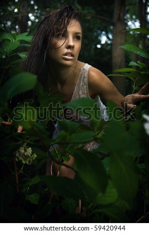 Delicate brunette posing in a forest - stock photo