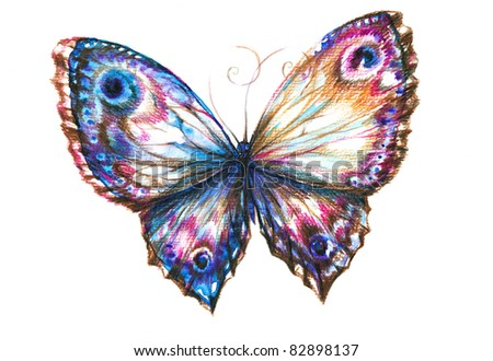 Delicate  butterfly hand painted isolated on white background.Picture I have create myself with watercolors and colored pencils. - stock photo
