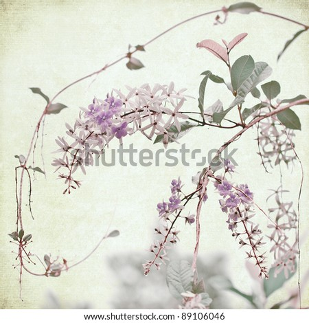 Delicate Flower Art Background - stock photo