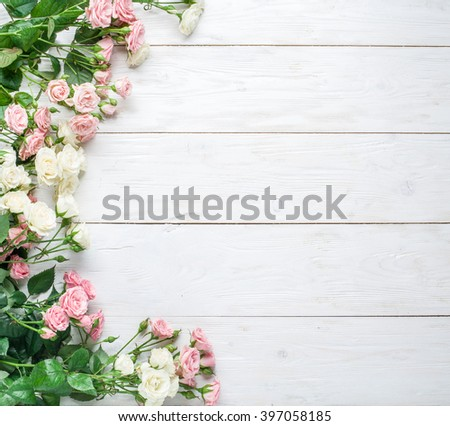 Delicate fresh roses on the white wooden background.  - stock photo