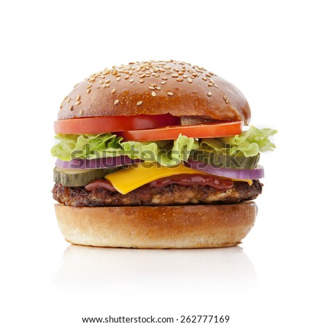 delicious and tasty burger on white background - stock photo
