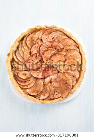 Delicious apple pie on white plate, top view - stock photo