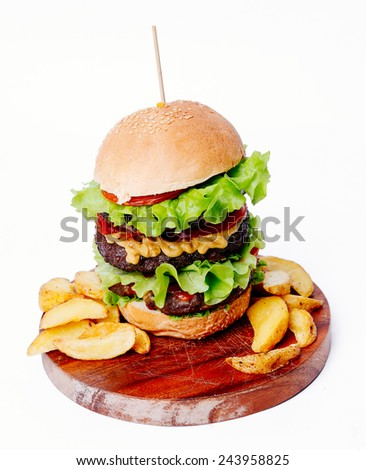 Delicious burger on a white background - stock photo