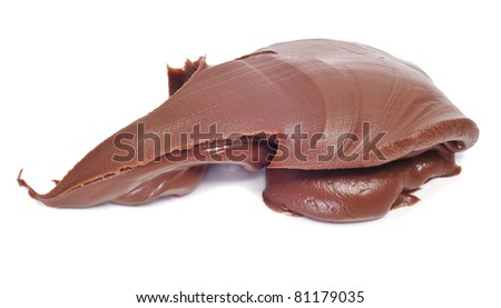 delicious chocolate cream on a white background - stock photo