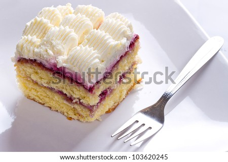 Delicious cream cake dessert on the plate - stock photo