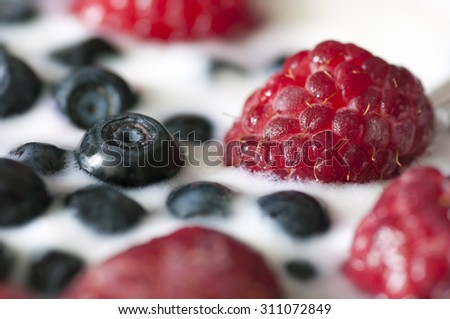 Delicious dessert made of yoghurt and ripe berries close up - stock photo