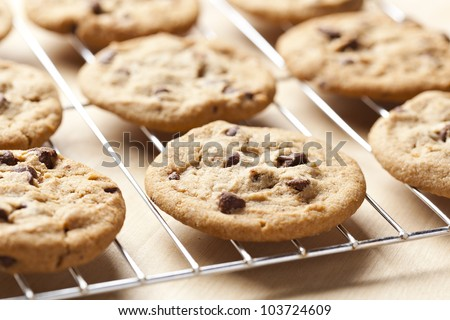 Delicious Fresh Chocolate Chip Cookies - stock photo