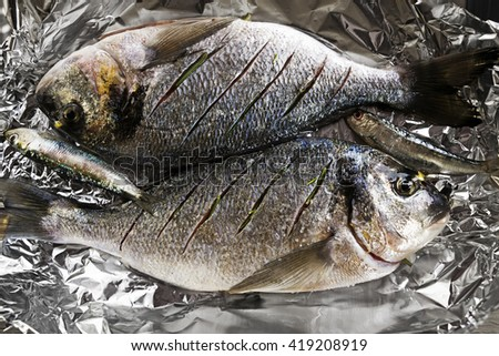 Delicious fresh raw gilthead with herbs. Culinary healthy cooking. - stock photo