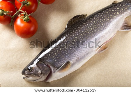 Delicious fresh raw trout fish with tomatoes - stock photo