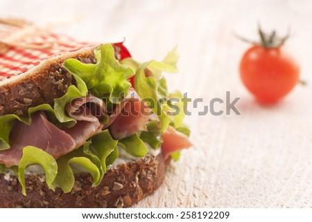 delicious fresh sandwich - stock photo
