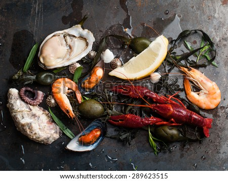 Delicious fresh seafood on dark vintage background, selective focus  - stock photo