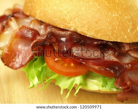 Delicious hamburger with bacon salad and tomatoes - stock photo
