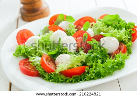 Delicious healthy mozzarella salad with cheese pearls, frilly leafy lettuce, tomato and fresh herbs for tasty Italian cuisine - stock photo