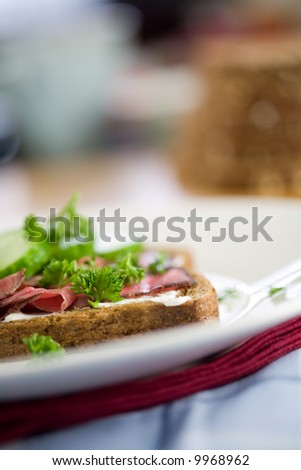 Delicious healthy sandwich (shallow dof) with roast beef, cucumber and parsley