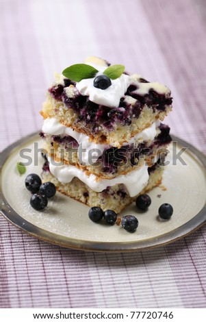 Delicious homemade blueberry cake with whipped cream. Shallow DOF - stock photo