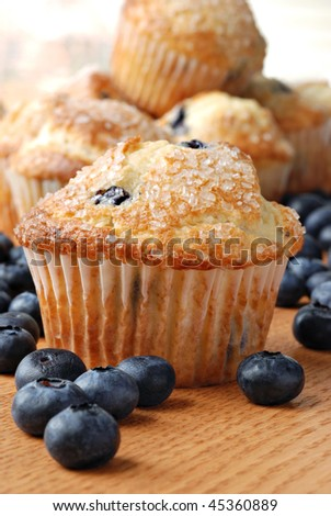 Delicious homemade blueberry muffins with fresh blueberries.  Macro with shallow dof. - stock photo